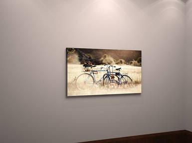 Фотокартина на холсте пейзаж велосипед