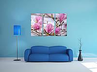 Модульна фото картина на стіну квіти магнолії магнолія