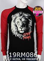 Мужской 2-цветный реглан валимарк лев, 2-нитка, светится в темноте, на манжете, С,М,Л,ХЛ ХЛ