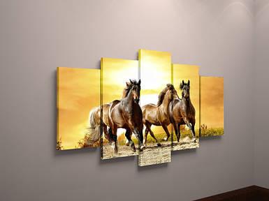 Модульная фото картина на холсте животные Лошади фотокартина постер кони холст