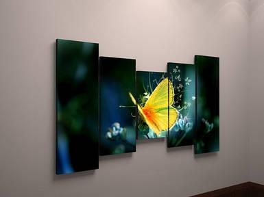 Картина модульная на холсте бабочка природа