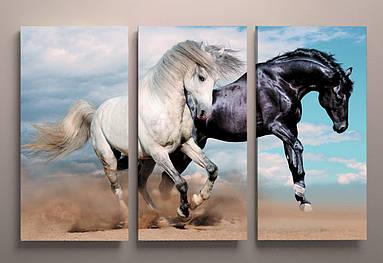 Фотокартина модульная Лошади животные фото картина на холсте кони холст