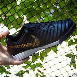Сороконожки Nike Tiempo X Legend VII Pro TF (44)