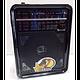 🔥✅ Радиоприемник Golon RХ-9100 с расширенным диапазоном, фото 4