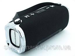 Hopestar H24 10W портативная колонка с Bluetooth FM и MP3, черная, фото 3