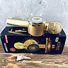 Микрофон DM Karaoke WS668 Золото, фото 2