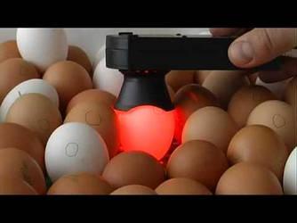 Заводской овоскоп Сяйво ОВ 1-60Д  для визуальной проверки качества яиц