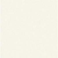Керамогранит Megagres Моноколоры WHITE POL PJ6900 [600x600x8,5мм]