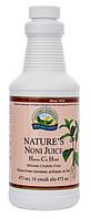Сок Нони Моринды Nature's Noni Juice - 473 мл - NSP, США, фото 1