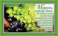 ПОС 059 открытка одинарная стихи Библии