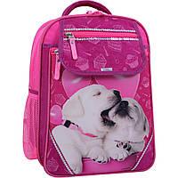 Школьный ортопедический рюкзак Bagland для девочек лабрадоры малиновый розовый