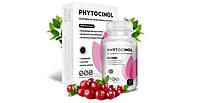 Phytocinol (Фитоцинол) - средство для профилактики и лечения цистита, фото 1