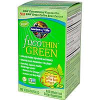 Жиросжигатель, FucoThin Green, Garden of Life, бурые водоросли и зеленый кофе, 90 капсул