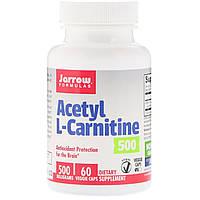 Ацетил карнитин, Acetyl L-Carnitine, Jarrow Formulas, 500 мг, 60 капсул