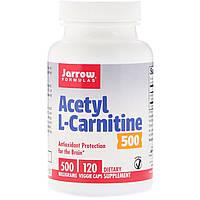 Ацетил карнитин, Acetyl L-Carnitine, Jarrow Formulas, 500 мг, 120 капсул