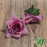 Головка роз Черри глициния