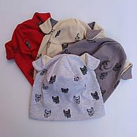 Трикотажная шапка Собачки 44-48 см