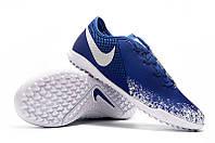 Футбольные сороконожки Nike Phantom Vision Academy TF Racer Blue/Chrome/White, фото 1