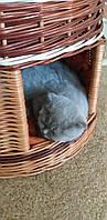 Домик с лежанкой для животных, фото 1