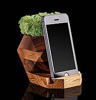 Органайзер с мохом, фото 1