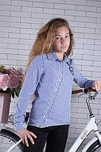Школьная рубашка в полоску для девочки р. 134-164 опт