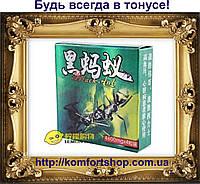 Препарат для повышения потенции Черный муравей Black Ant 4 капсулы упаковка