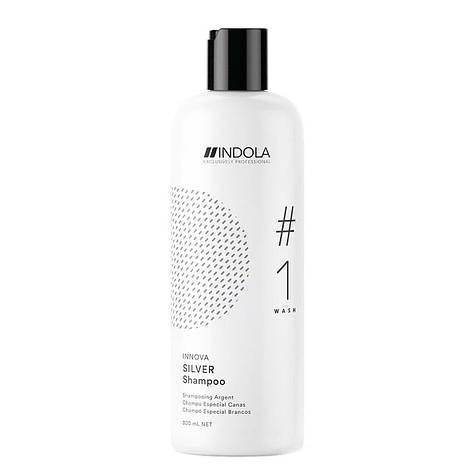 Шампунь для окрашенных волос с серебрящим эффектом 1500 мл, фото 2