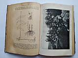 1913 Общая ботаника А.Натансон Книжный магазин Труд Одесса Дерибасовская, 25, фото 9