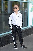 Брюки для мальчика с лампасами  ев631, фото 1