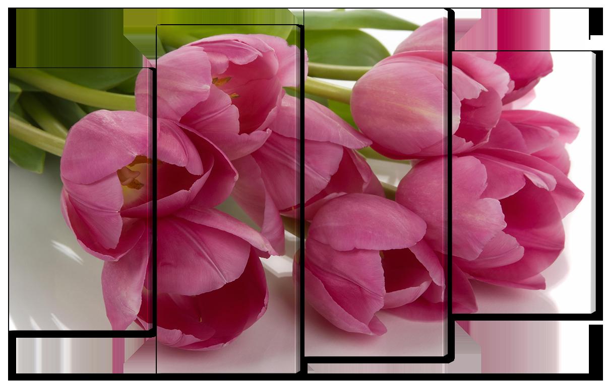 Модульная картина Interno Холст Тюльпаны на белом фоне 126x77см (R1122L)