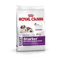 Сухой корм Royal Canin Giant Starter 4 кг