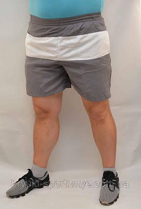 Шорты мужские с белой вставкой XL - Товар с витрины, фото 2