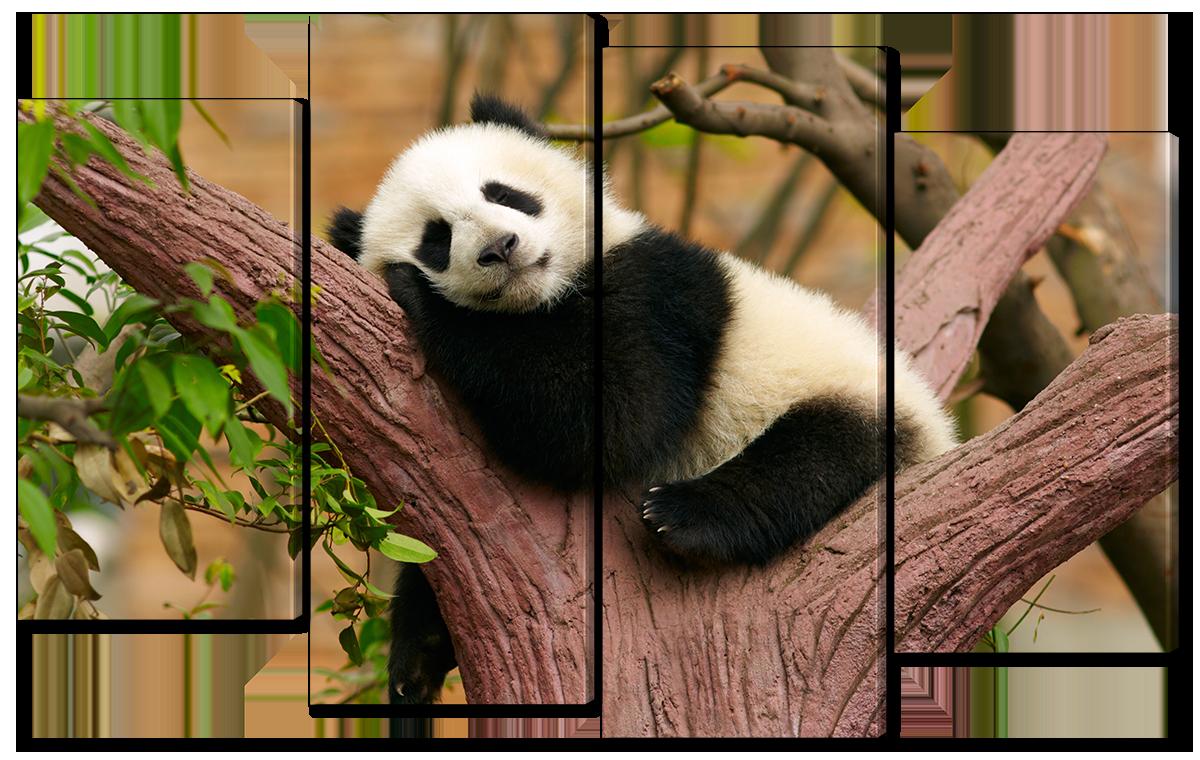 Модульная картина Interno Эко кожа Маленькая панда на дереве 94x56см (A1130S)