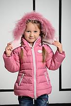 Детская куртка для девочки Верхняя одежда для девочек BRUMS Италия 133BGAA012