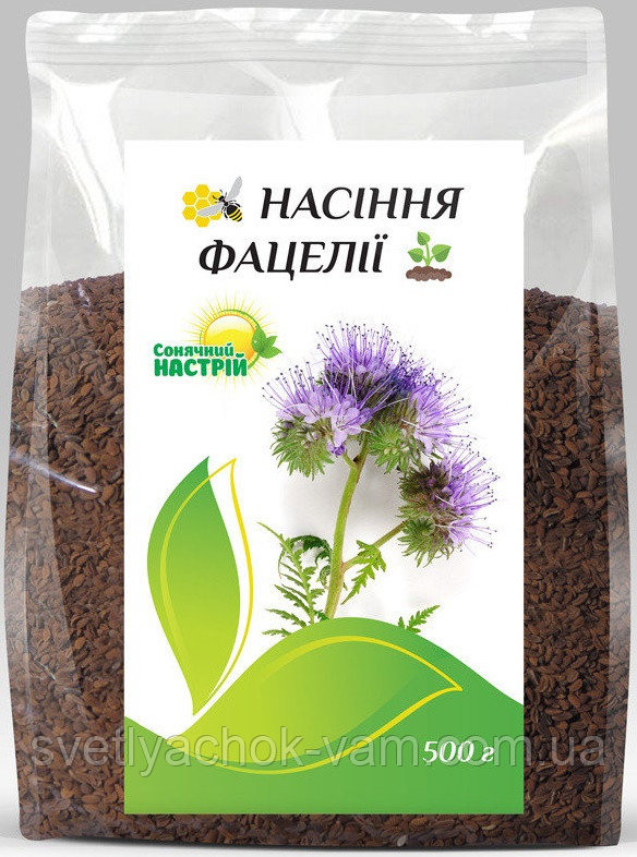 Фацелія Phacelia однолітня рослина висотою 50-100 см одна з найкращих медоносних культур, упаковка 500 г, фото 1
