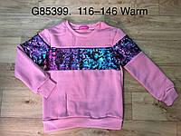 Кофта утеплённая для девочек оптом, Grace, 116-146 рр., Арт. G85399, фото 1