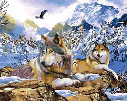 Алмазная мозайка+картина по номерам Волки, 40x50 см., Rainbow art