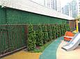 Зеленый забор из искусственной травы в рулонах (Турция)., фото 7