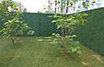 Зеленый забор искусственный, фото 8