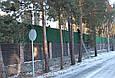 Зеленый забор искусственный, фото 4