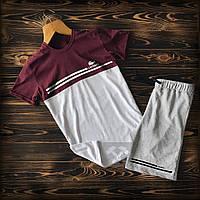 Cпортивные Мужские шорты и футболка Lacoste (Лакост). / Летние комплекты для мужчин