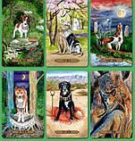 Карты Magical Dogs Tarot (Таро Волшебных Собак), фото 3