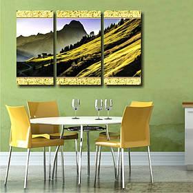 """Модульна картина """"Зелена гора. Пейзаж"""""""