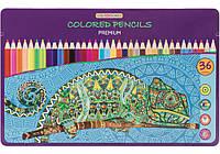 """Карандаши цветные """"Premium"""", 36 цветов в металлической коробке"""
