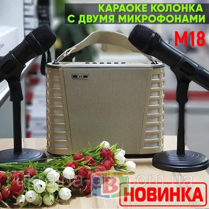 Портативная караоке колонка. Встроенный USB, Bluetooth, MP3. Время работы 4 часа. M18