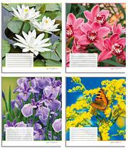 Набор тетрадей 10 штук Полиграфист Цветы 2 A5 в клетку 18 листов 18К 431