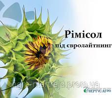 Насіння соняшнику РИМИСОЛ під Евролайтинг (НЕРТУС)