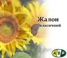 Насіння соняшнику ЖАЛОН Агроспецпроект