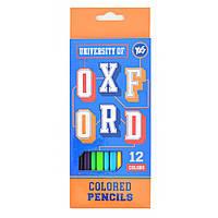 """Карандаши 12 цветов """"Oxford""""(blue) YES"""
