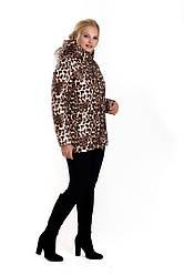 Зимова жіноча куртка без хутра 42-54 леопардовий принт